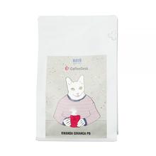 HAYB x Coffeedesk  - Rwanda Gihanga PB Biały Kot