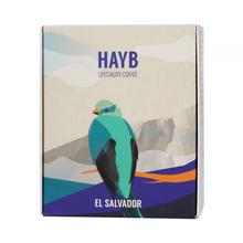 HAYB - El Salvador Los Pirineos Lot 16