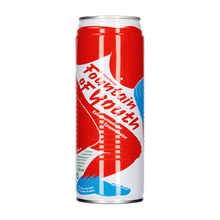 Fountain of Youth - Coconut Water 520ml