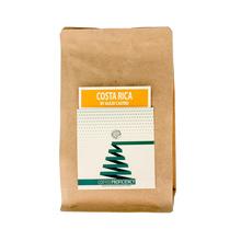 Coffee Proficiency - Costa Rica Alejo Castro