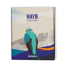 HAYB - Guatemala Ericka Sanchez