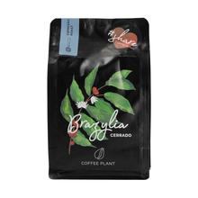 COFFEE PLANT - Brazil Cerrado Espresso