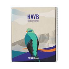 HAYB - Honduras Evin Moreno