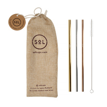 Sol Straw Kit - 3 reusable straws + Cleaning Brush + Bag