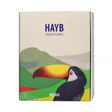 HAYB - Meksyk Portillo