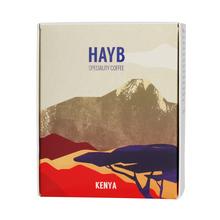 HAYB - Kenya Gicherori Kibugu