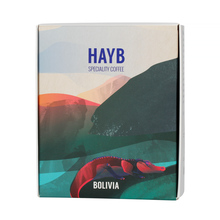 HAYB - Bolivia Arcangel