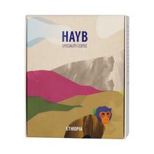 HAYB - Ethiopia Chelchele Gedeb