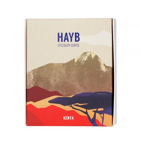 HAYB - Kenya Kirigu AA