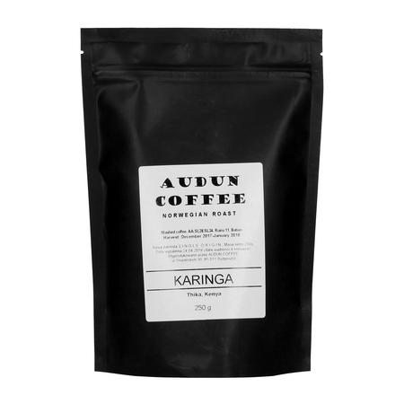 Audun Coffee - Kenya Karinga