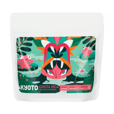KYOTO - Costa Rica La Guaca Filter